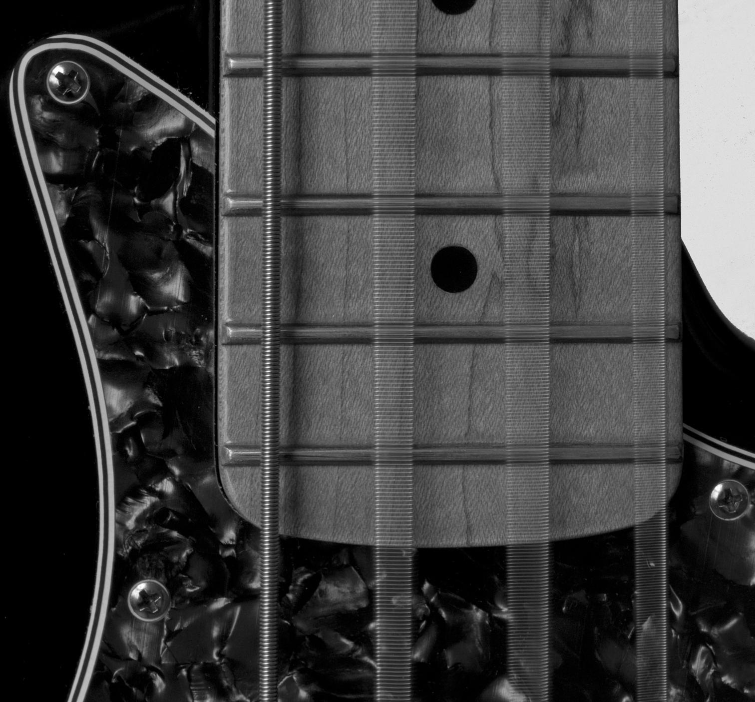 Bass notes by Tanya Gilzean