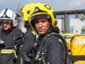 Fire Fighter by Paul Lehane