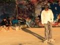 Sunshine and skateboards by Lou Humphreys