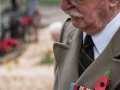 War Veteran in the Field of Remembrance, Westminster Abbey by David Pollard ARPS (20)_