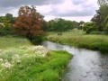 RIVER DARENT, EYNSFORD by Peter Salmon