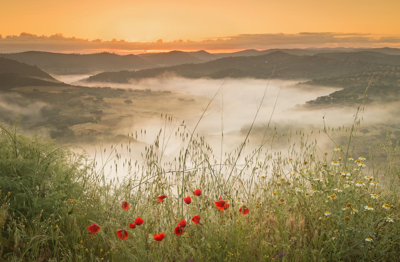 Sunrise on the Iberian Border by Czech Conroy